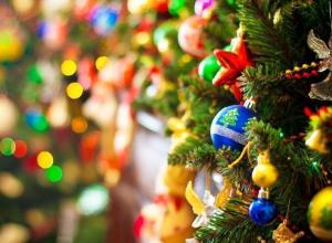 «Молодежную елку» с флешмобом впервые устроят для старшеклассников и студентов Волжского