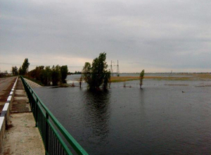Экологический квест по уборке берега Ахтубы решили провести в Волжском