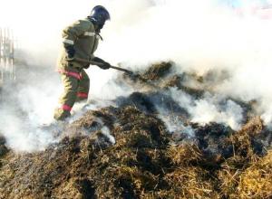 В Среднеахтубинском районе горело сено