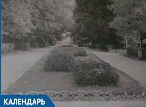Календарь Волжского: 12 ноября завершилась выставка цветов