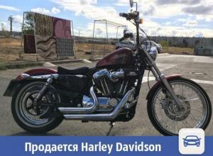 В Волжском продается мощный Harley Davidson