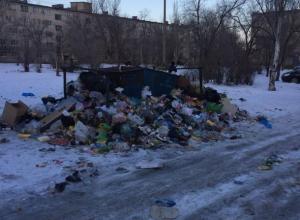 Волжане возмутились разлагающемуся мусору в своем дворе