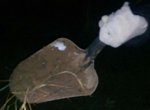 На обследуемой территории нашли сломанную лопату в Волжском