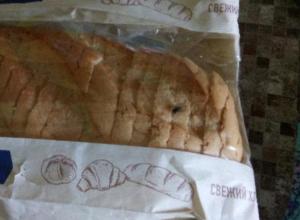 «Лента» упаковала хлеб с летающим насекомым, - волжанка