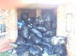 В парке Волжского выросли огромные горы из черных полиэтиленовых мешков с мусором