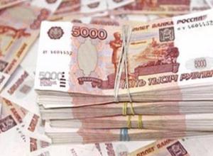 На отлов бродячих собак в Волжском не хватает еще 2,5 миллиона рублей