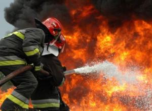 Обгоревший труп мужчины обнаружили в Быковском районе после разрушительного пожара