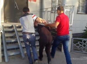 Волжанам показали фотографии с задержания убийцы пятилетней малышки из Калача