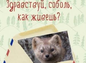 Педагоги от имени животных ответили на вопросы волжских школьников