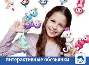 Интерактивные обезьянки готовы позабавить детей в Волжском