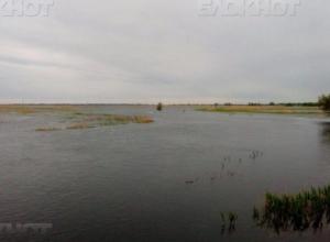 Под Волжским возродили озеро Широкогорлое, подготовив «почву» для жизни сазанов
