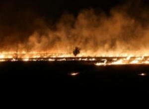 Волжан предупредили о чрезвычайной пожароопасности в лесах