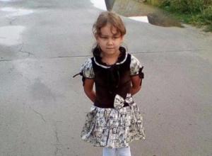 Волжан попросили помочь в поисках пятилетней Софии Четвертновой