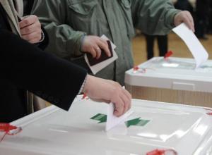 Волжане выберут кандидатов в депутаты от правящей партии