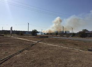 Сухая трава вспыхнула в Волжском напротив завода «Кока-колы»
