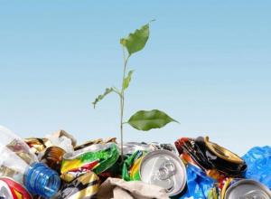 Волжан, бессовестно разбрасывающих мусор, будут призывать к ответственности