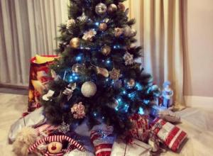 Известная волжанка Юлия Ковальчук призналась, что ждет Новый год с особенным чувством