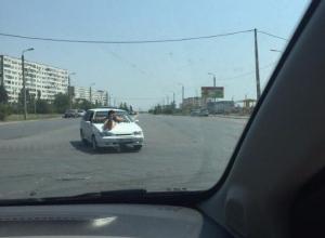 Экстремалка решила позагорать на капоте движущегося авто в Волжском