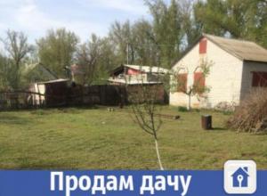 Для волжан продается дом с плодоносящим садом