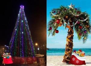 Волжане подумали о том, под каким деревом встречать Новый год лучше