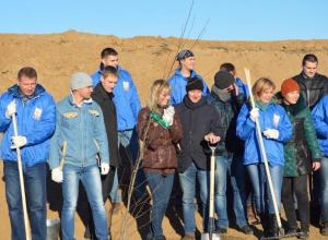 Волжский трубный завод завершил рекультивацию земель полигона промышленных отходов
