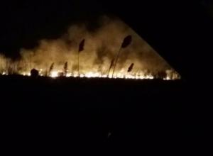 Из-за крупного ландшафтного пожара погибли обитатели волжских степей: ежики, мыши и хомяки