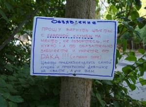Угрожающее послание ворам оставили волжские садовники, из-за которых пропали редкие цветы
