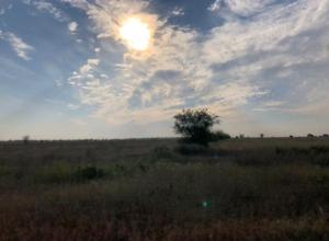 Солнечное воскресенье спрогнозировали жителям Волжского