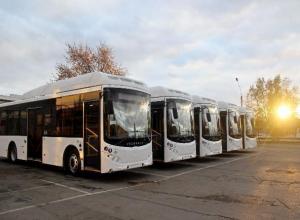 Всего пять современных автобусов прибыли в Волжский