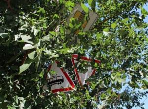 Джунгли на дорогах стали главной причиной несправедливых штрафов в Волжском