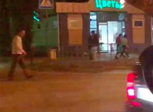 Невозмутимый волжанин прогулялся по проезжей части проспекта