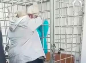 Задержанная в Волжском мать-убийца 9-месячного ребенка разревелась в суде