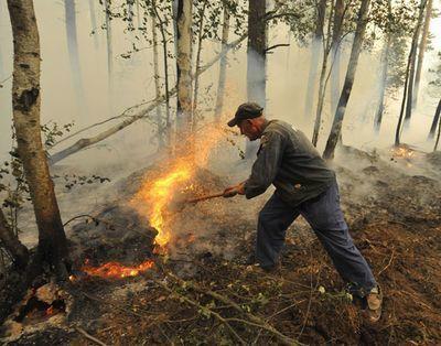 ВВолгоградской области объявлена чрезвычайная пожароопасность