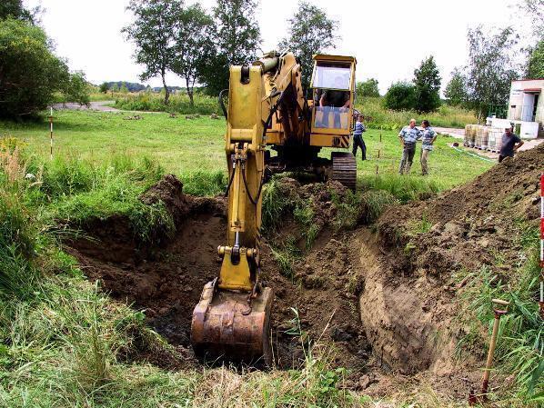 Под Волгоградом предприниматель уничтожил земли лесного фонда на13 млн руб.