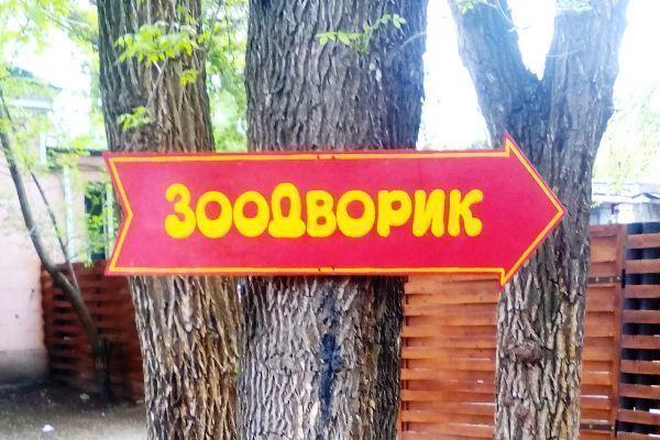 Истерика вокруг зоодворика в Волжском оказалась напрасной