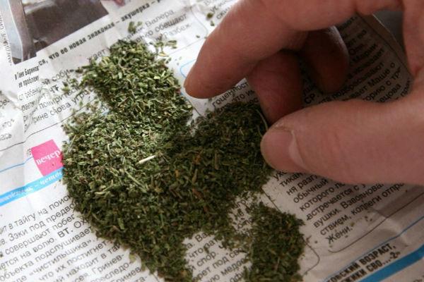 Житель Волжского убегал от полиции с марихуаной в кармане