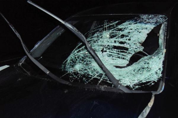 В Волгограде под колесами «двенадцатой» погибла женщина