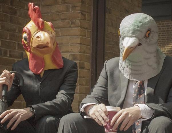 Врегионе возродили старинную традицию отмечать День птиц наБлаговещение