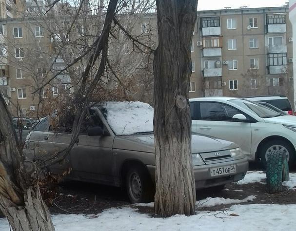 В Волжском появились первые «жертвы» ветра