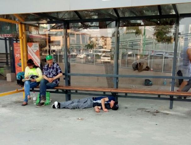 Спящая красавица появилась на остановке в Волжском