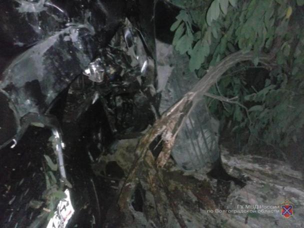 В Волжском водителя Datsun госпитализировали после столкновения с деревом