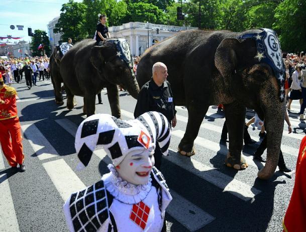 На Первое мая по Волжскому пройдут слоны