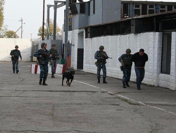 Сбивший насмерть роллера сын замглавы «Газпрома» останется вколонии