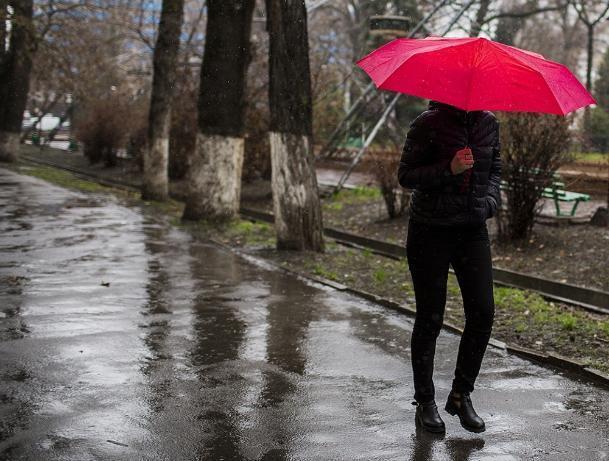 День метеоролога в Волжском будет с осадками