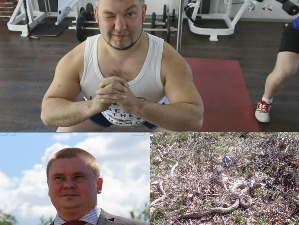 Бомбардировка Сирии, змеи в парке «Волжский» и первый герой «Сбросить лишнее»: 14 апреля в Волжском