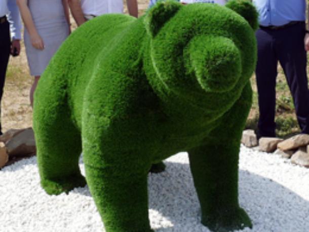 В новом парке появился топиарный медведь