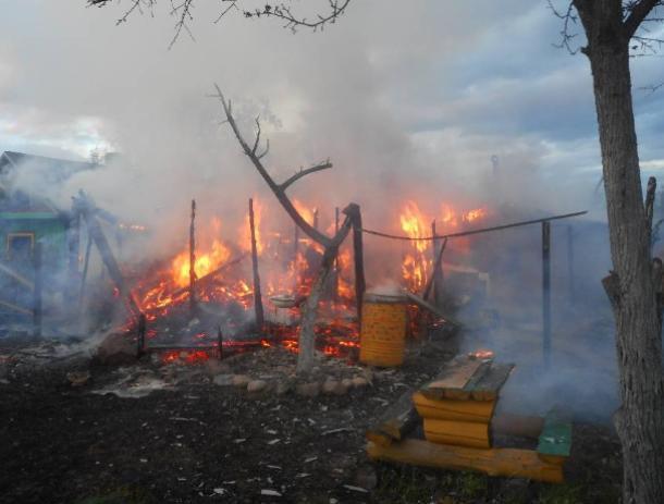 В Волжском СНТ выгорел дачный участок