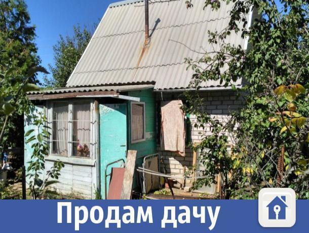 Продается уютная дача с плодоносящим садом в Волжском