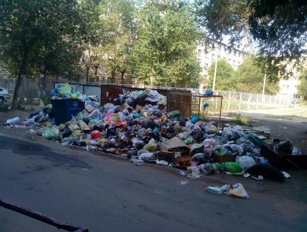 Приносите еще, нам мало! - жители Волжского о горах мусора в своем дворе