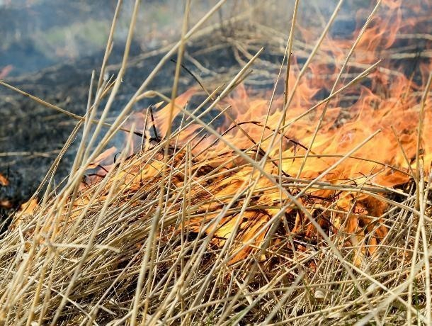 В Среднеахтубинском районе сгорело 120 тонн сена